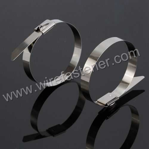 6d90cf4f06aa 4.6mm*400mm(15.75inch)Naked stainless cable ties-ball self-lock